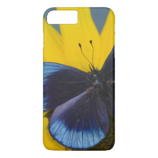 Sammamish Washington Photograph of Butterfly 44 iPhone 7 Plus Case