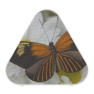 Sammamish Washington Photograph of Butterfly 50 Blueooth Speaker