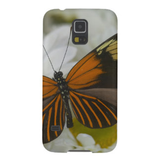 Sammamish Washington Photograph of Butterfly 50 Case For Galaxy S5