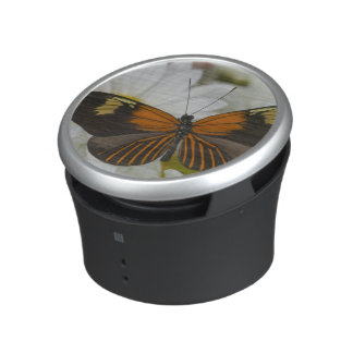 Sammamish Washington Photograph of Butterfly 50 Speaker