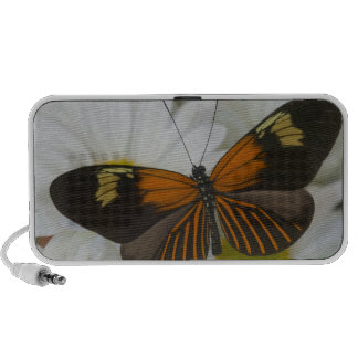 Sammamish Washington Photograph of Butterfly 50 Travel Speaker