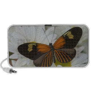 Sammamish Washington Photograph of Butterfly 50 iPod Speaker