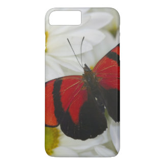 Sammamish Washington Photograph of Butterfly 51 iPhone 7 Plus Case