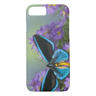 Sammamish Washington Photograph of Butterfly 52 iPhone 7 Case