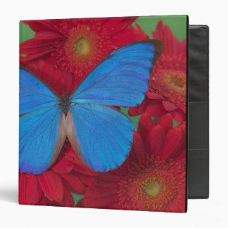 Sammamish Washington Photograph of Butterfly 56 3 Ring Binders