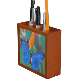 Sammamish Washington Photograph of Butterfly on 2 Pencil Holder