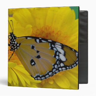 Sammamish, Washington. Tropical Butterflies 38 Vinyl Binder