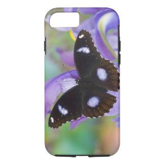 Sammamish Washington Tropical Butterflies iPhone 7 Case