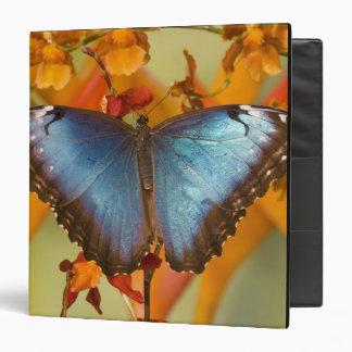 Sammamish Washington Tropical Butterfly 10 Vinyl Binder