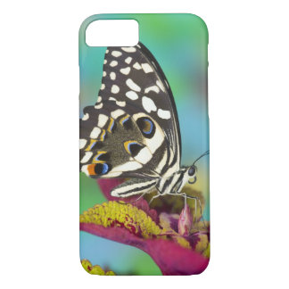 Sammamish, Washington Tropical Butterfly 5 iPhone 7 Case