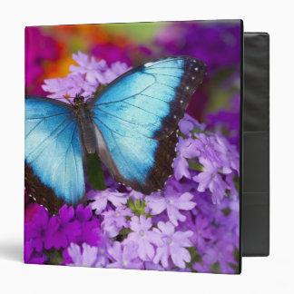 Sammamish Washington Tropical Butterfly 7 Vinyl Binders