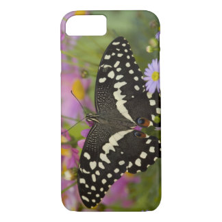 Sammamish, Washington Tropical Butterfly 8 iPhone 7 Case