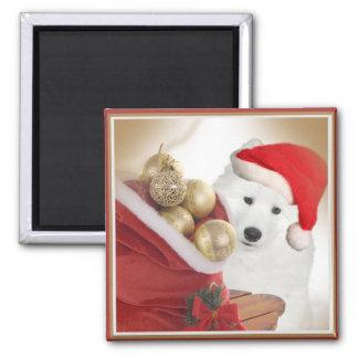 Samoyed Christmas Magents Magnet