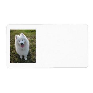 Samoyed dog beautiful photo blank address labels