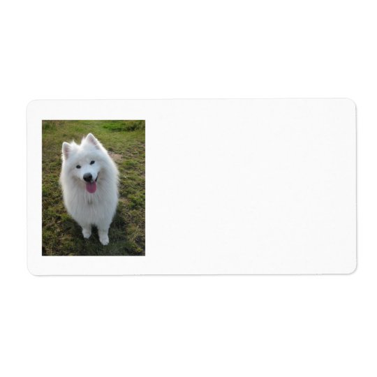 Samoyed dog beautiful photo blank address labels