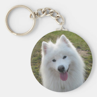 Samoyed dog beautiful photo keyring, keychain