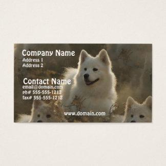Samoyed Dog Breed Business Card
