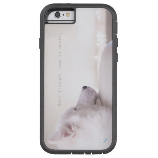 Samoyed dog,  iPhone 6/6s Tough Xtreme Case