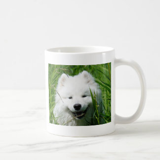 Samoyed In Grass Mug
