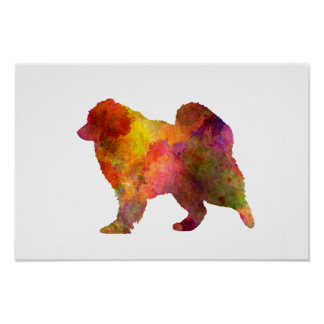 Samoyed in watercolor poster
