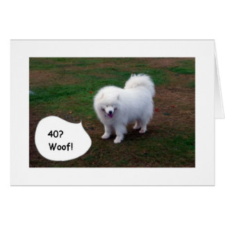 SAMOYED JUST CAN'T BELIVE YOU40! WOOF! CARD