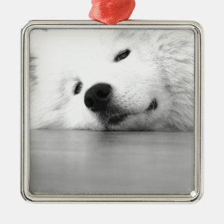 Samoyed Photo Dog White Silver-Colored Square Ornament