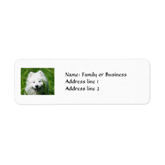 Samoyed Return Address Labels