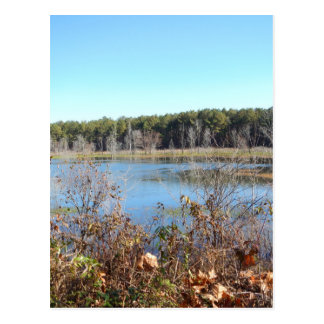 Sams Lake Bird Sanctuary Postcard