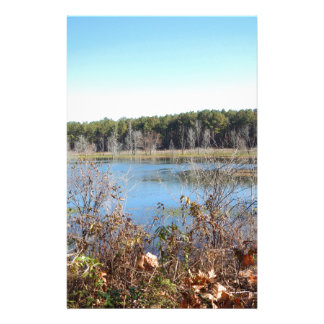 Sams Lake Bird Sanctuary Stationery
