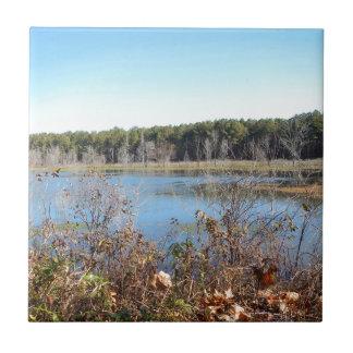 Sams Lake Bird Sanctuary Tile