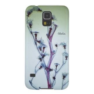 Samsung Galaxy Case of Obelia