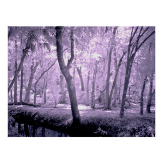 Samurai Forest Poster