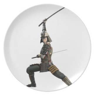 samurai with two swords looking to the front plate