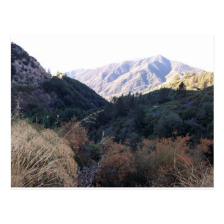 San Bernardino Mountains Postcard