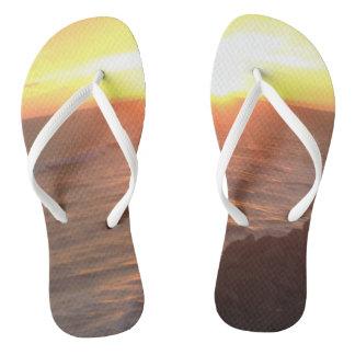 San Clemente Flip-Flops Flip Flops