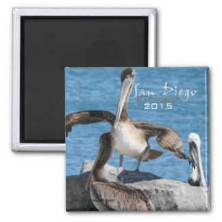 San Diego California Pelicans Magnet Change Year