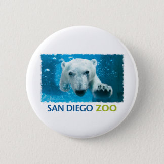 San Diego Zoo Polar Bear 2 Inch Round Button