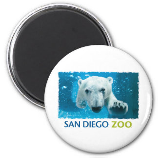 San Diego Zoo Polar Bear 2 Inch Round Magnet