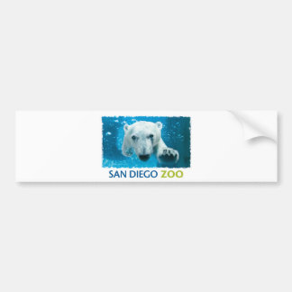 San Diego Zoo Polar Bear Bumper Sticker