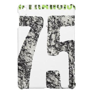 san francisco design case for the iPad mini