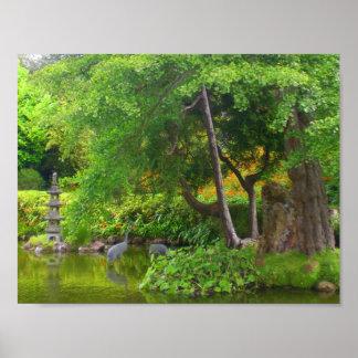 San Francisco Japanese Tea Garden Pond #4 Poster