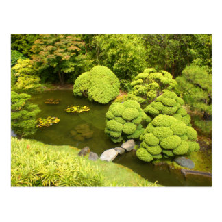 San Francisco Japanese Tea Garden Pond #6 Postcard