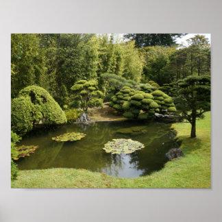 San Francisco Japanese Tea Garden Pond Poster