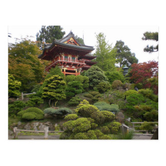 San Francisco Japanese Tea Garden Postcard