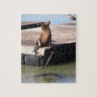 San Francisco Pier 39 Sea Lion Jigsaw Puzzle