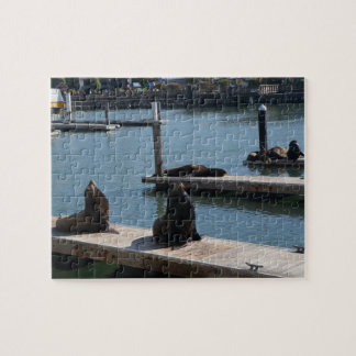 San Francisco Pier 39 Sea Lions #3 Jigsaw Puzzle