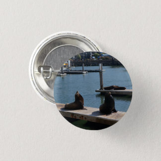 San Francisco Pier 39 Sea Lions #3 Pinback Button
