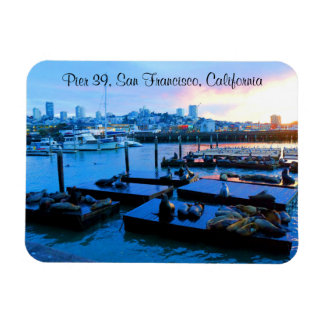San Francisco Pier 39 Sea Lions #5-2 Magnet