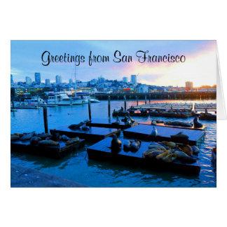 San Francisco Pier 39 Sea Lions #5-3 Card
