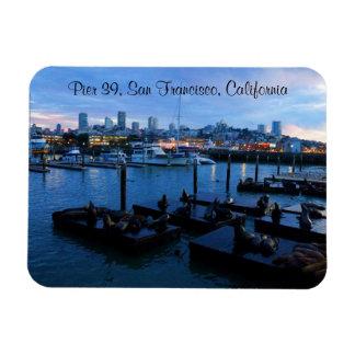San Francisco Pier 39 Sea Lions #7-2 Magnet